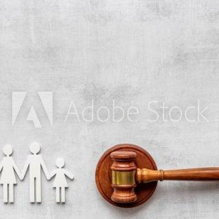 뉴욕 이혼 소송중 자녀 접견권